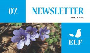 Newsletter ELF – nr. 7