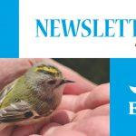 Newsletter ELF – nr. 8